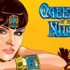 Queen-of-the-Nile-Aristocrat